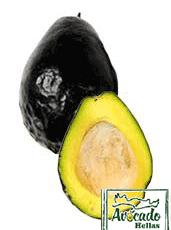 Brazos-Belle-avocado-chania-crete-greece
